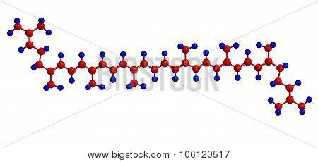Molecular Structure Of Lycopene