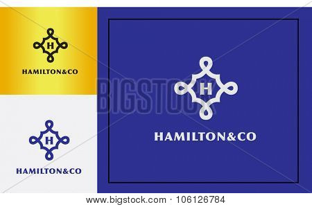 luxury premium design initial logo vector for your company