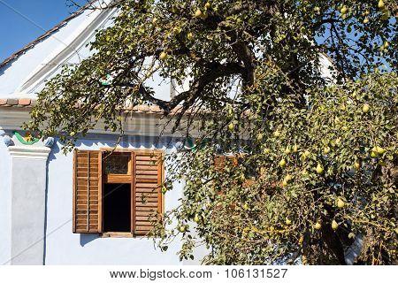 Traditional House From Viscri, Transylvania