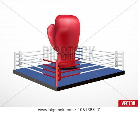 Symbol of a boxing and prize ring.