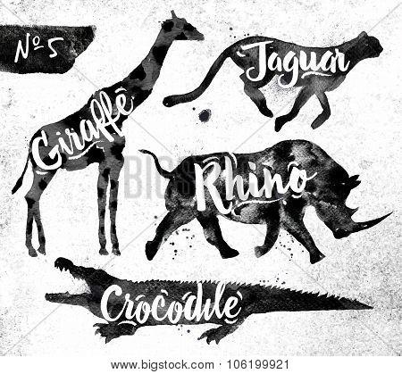 Painted Black Animals Crocodile