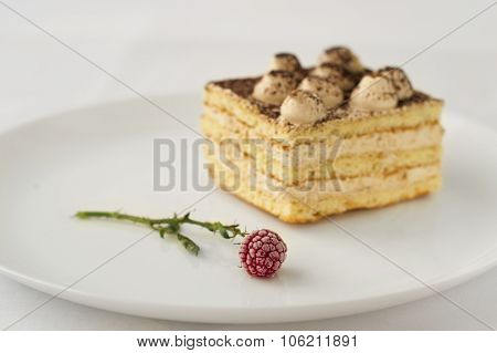 cold piece of cake with cocoa and frozen raspberries flowers