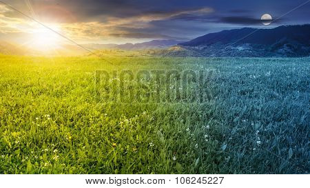 Fresh Grass  Meadow Near The Mountains Day And Night