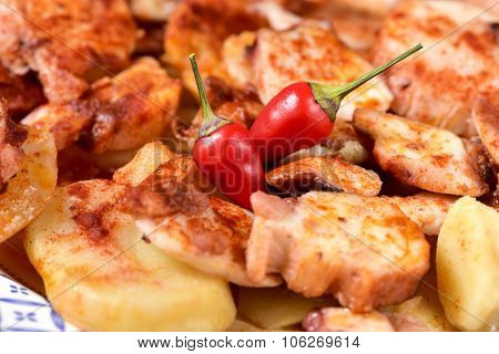 closeup of a plate with pulpo a la gallega, a recipe of octopus typical in Spain, spiced with paprika