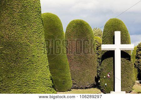 Cemetery of Punta Arenas. Punta Arenas Chile. poster