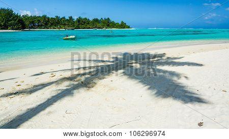 Incredible Ocean Of Cook Islands