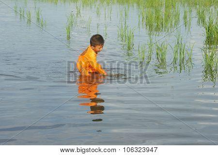Asian Chlidren, Water, Little Boy, Danger