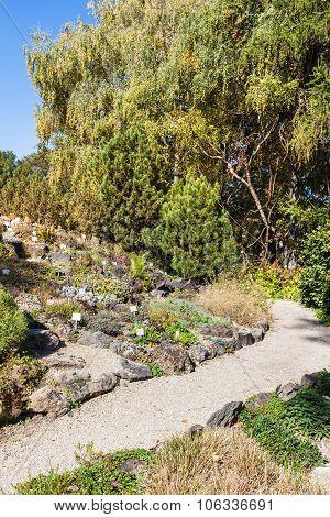 Botanical Garden Near Belvedere Palace, Vienna