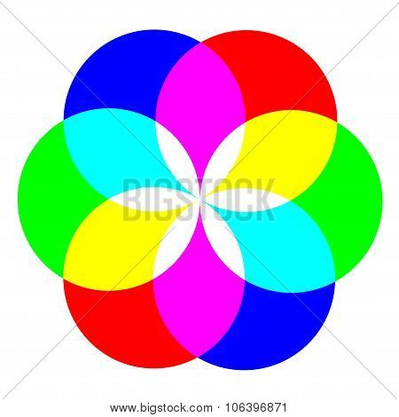 Flower Of Colors