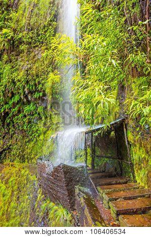 Tropical Waterfall, Madeira