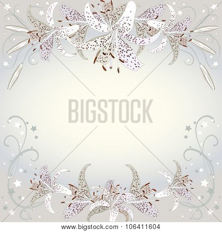 Floral Background Of White Lilia Flowers