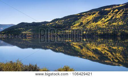 Fall aspen trees turning yellow, reflecting in lake