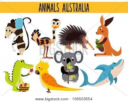 Set of Cute cartoon Animals and birds of Australia and its ostrovov. Kangaroo, possum, numbat, the K