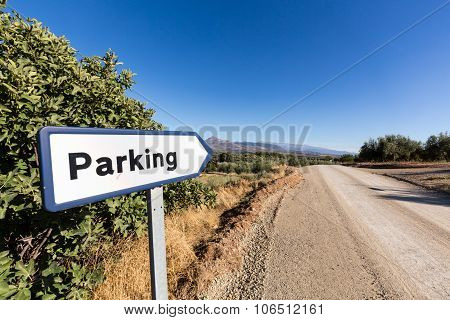 Olive Trees On Hillside Above Dirt Road With Sign