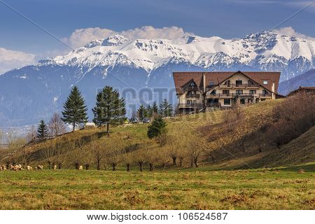 Tranquil Bucegi Mountains Landscape
