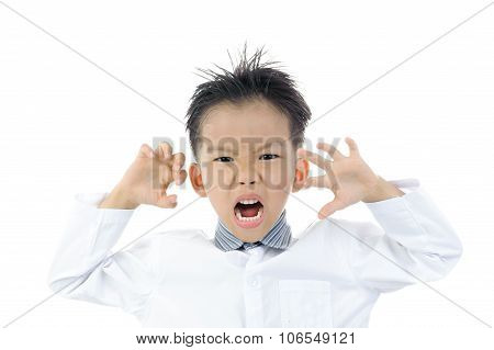 Young Asian boy portrait action as tiger isolated on white. poster