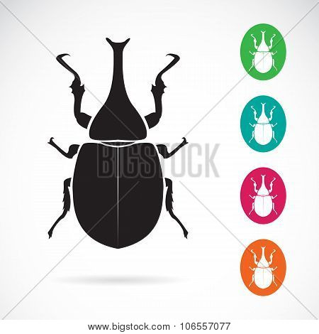 Vector Image Of Stag Beetle On White Background