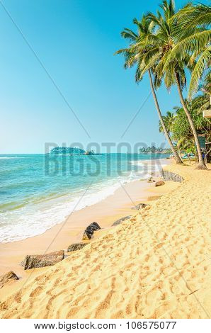 Exotic beach with golden sand and palm trees