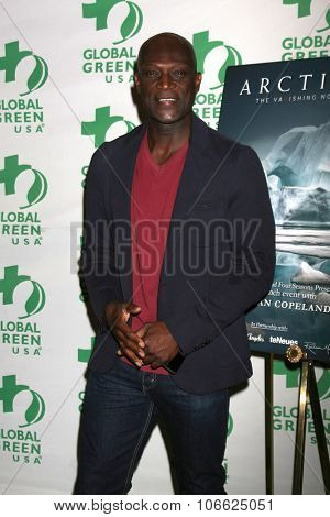 LOS ANGELES - OCT 29:  Peter Mensah at the Global Green Hosts Book Lauch of