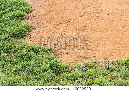 Slope Erosion Control Close Up With Grids And Grass Planted