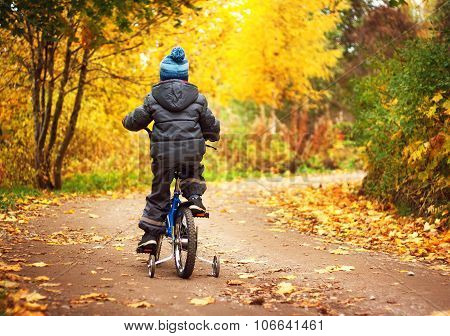 A boy is riding on a bike in autumn day