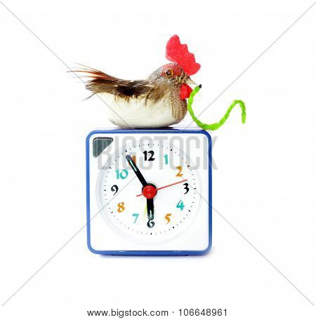 Early bird catches gets the worm proverb representing alarm clock on 6 am with bird and maggot in neb poster