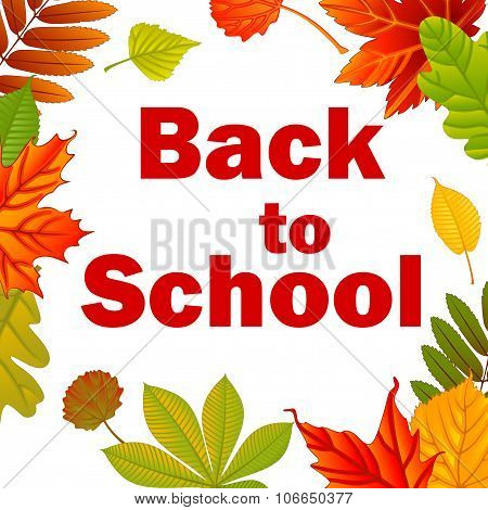 Back to school. Autumn background with leafs. Vector illustration.