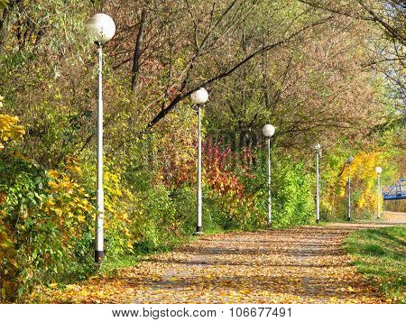 lamps in autumn