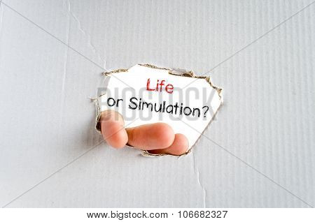 Life Or Simulation Text Concept