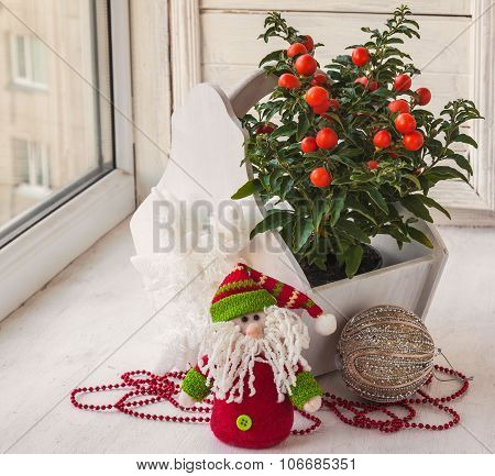 Window Decoration For The Winter Holidays With A Toy And Nightshade (mass-produced)