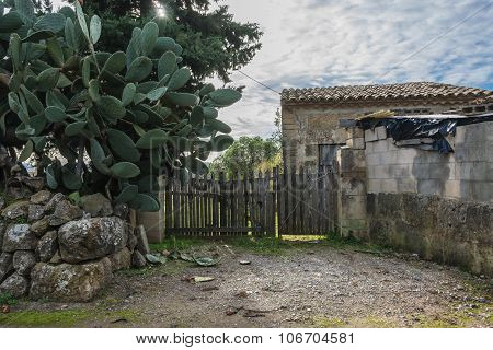 Typical abandoned finca with stone hut and wooden fence and big green cactus