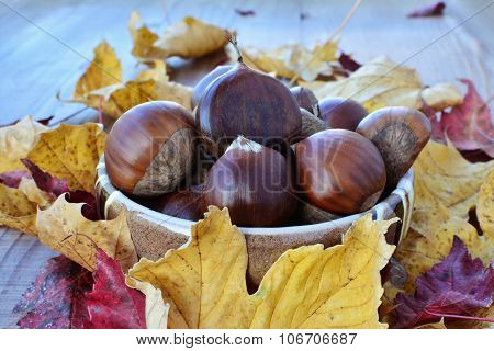 Sweet Chestnuts (castanea Sativa) In A Bowl