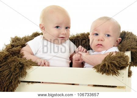 Two infant cousins together in a padded wooden crate.  On a white background.