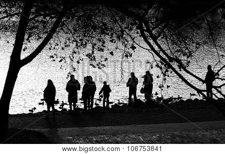 Shadows of people feeing birds near the lake in black and white photo.People shadows, artistic photo