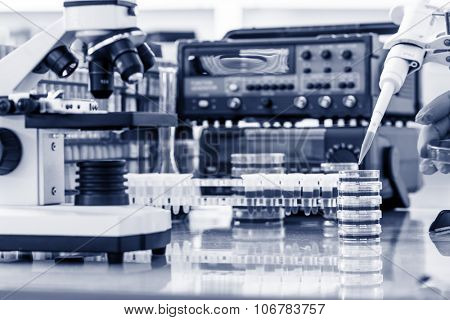 workbench in microbiological laboratory
