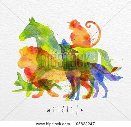Overprint Animals Horse