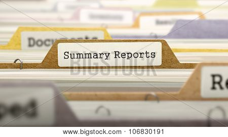 Folder in Catalog Marked as Summary Reports.