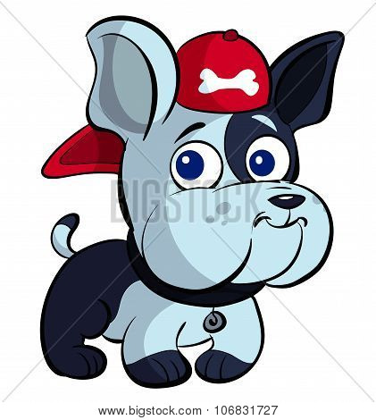 cute puppy bulldog with a red cap