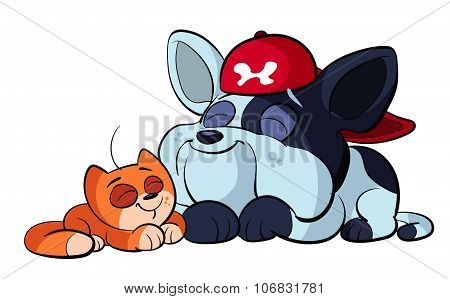 cute bulldog puppy and red cat