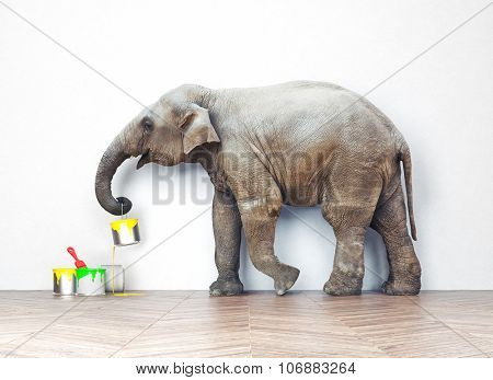 An elephant with paint cans. Photo combination concept
