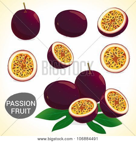 Set Of Passionfruit In Various Styles Vector Format