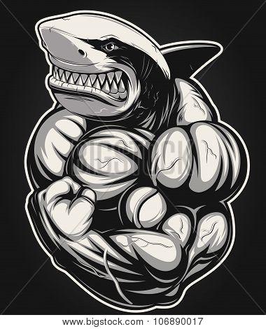 White shark bodybuilder