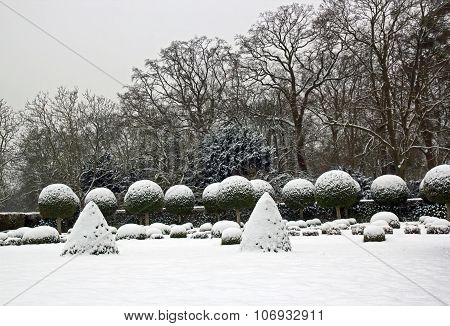 Winter garden, boxwood and yew trees under snow (near Paris France)