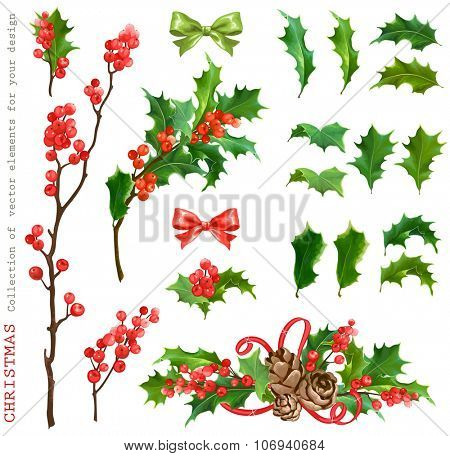 Christmas Collection of decorative vector leaves holly and branches with winter red berries, for your design.