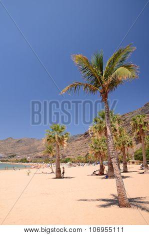 picturesque gorgeous playa de las Teresitas on Tenerife island, Spain poster