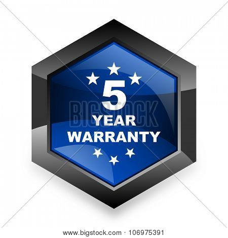 warranty guarantee 5 year blue hexagon 3d modern design icon on white background poster