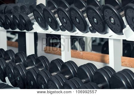 Close-up View Of Barbells Organized In Row