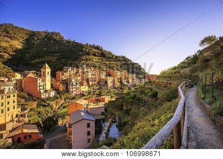 Manarola village trekking trail church and vineyard. Cinque Terre National Park Liguria Italy Europe. Long Exposure poster
