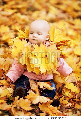 happy  baby outdoor in the autumn park
