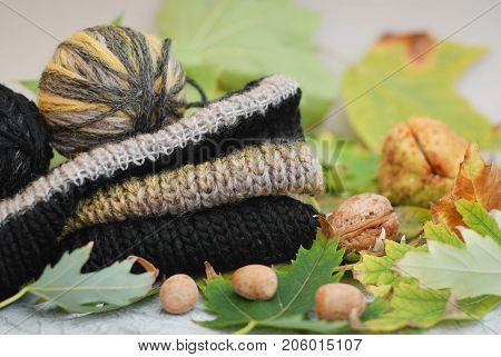 Autumn still life - Warm knitted scarf, on wooden table with fall leaves. Knitted sweater with autumn leaves and nuts. Autumn cozy background. Top view.
